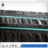 PP Woven Flat Fabric in Roll for Geotextile