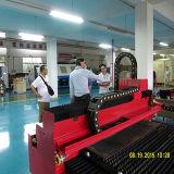 Машинное оборудование вырезывания лазера волокна CNC для металлопластинчатого