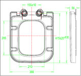 De nieuwe Zetel van het Toilet van de Versie van de Aankomst Snelle Vierkante Langzame Dichte