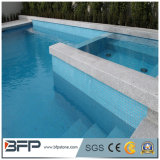 Het blauwe het Zwemmen Het hoofd biedende Machinaal gesneden China van het Kalksteen Het hoofd bieden van de Steen van de Aard