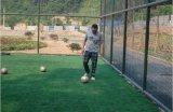 Moquette artificiale poco costosa dell'erba di gioco del calcio eccellente del fornitore