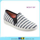 Form-Entwurfs-Segeltuch-Schuhe mit dem Zebra gedruckt