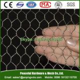 金網の網/六角形の金網/家禽は一致する