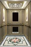 مسافر مصعد مصعد منزل مصعد مصعد [هل-إكس-020]