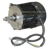 Motor eléctrico para el triciclo