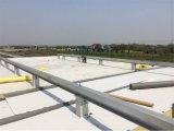 Membrana de impermeabilización del PVC para los materiales para techos