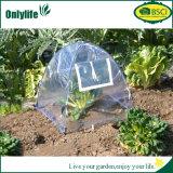 Serra trasparente pieghevole centrale del PVC della pianta di giardino di formato di Onlylife