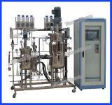 Serbatoio di putrefazione della birra dell'acciaio inossidabile due per il laboratorio