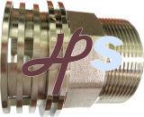 Fornitore d'ottone dell'inserto del filetto maschio PPR di Cw617n