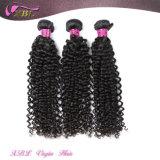Un donateur mongole Curly naturel Afro Kinky Cheveux