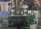 Máquina de embalagem plástica servo da bolha do dobro de alta freqüência da selagem