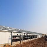 Het geprefabriceerde Landbouwbedrijf van het Gevogelte met de Volledige Vastgestelde Apparatuur van het Gevogelte van Qingdao, China