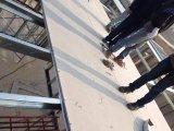 Precio del tablero del cemento de la fibra