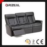 Insieme del sofà del salone, negozi di mobili stabiliti del sofà