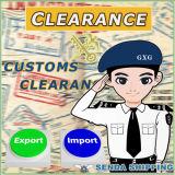 Serviço internacional do transporte da expedição de China