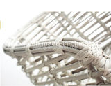 De Foshan d'usine vente directement ! Meubles en osier de jardin de rotin avec Unbrella