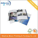 Brochure de Pomotional d'impression de Digitals (QYZ033)