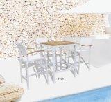 Стул самомоднейшего европейского напольного отдыха сада патио Stackable