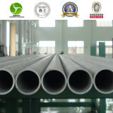 Sts304 304L 316L 309S 310S 321 Edelstahl Seamless Pipe