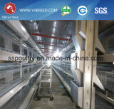 Gabbia di strato dell'azienda agricola usata sulla grande azienda agricola