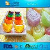 ¡Venta caliente! Gelatina de la alta calidad - fabricante superior en China