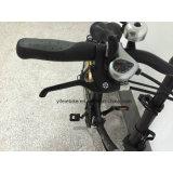 Bicicleta de dobramento elétrica de 20 polegadas com a bicicleta da bateria de lítio E