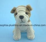 Brinquedo enchido macio 4 Asst. do cão do luxuoso