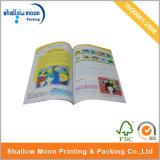 De digitale Brochure van Pomotional van de Druk (QYZ033)
