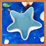 Las estrellas de mar modelan el crisol azul blanco sólido del alimento del agua de los juguetes de la cerámica del habitat de los hámsteres del estilo