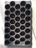 Placa de plantação automática de semeadoras de plástico Máquina de termoformação