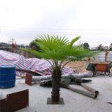 Искусственная пальма