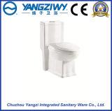 Туалет двигателя Siphonic керамический цельный