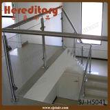 Barandilla del balcón del acero inoxidable del vidrio de la alameda/del chalet/de placa del hotel (SJ-H5041)