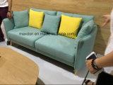 Sofà di svago, sofà, 2017 nuovo sofà, sofà di disegno moderno