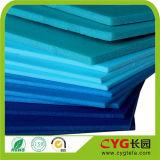 Strato della gomma piuma di alta qualità XPE (CYG)