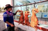 Horno lleno de la carne del horno de la parrilla del acero inoxidable
