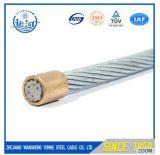 7*0.8mm, 7*0.9mm, 7*1.0mm ont galvanisé le brin en acier d'acier de câble de corde de fil d'acier de fil de messager