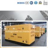 генератор звукоизоляционного молчком генератора 11kVA -42kVA открытый с двигателем Quanchai