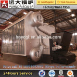 2ton Stoomketel van de Boiler van de Brandstof van de Biomassa van China de Professionele Hout In brand gestoken Horizontale