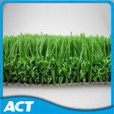 Inducteur d'herbe artificiel non Infilled du football V30-R