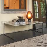 Новые цены таблицы чая способа журнального стола металла (NK-CTA008)