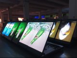 Крытый дисплей с плоским экраном СИД с верхним качеством