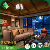 シラカバ(ZSTF-15)のホテルの家具の現代様式部屋セット