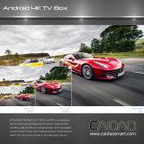 Contenitore astuto 4k - memoria di Android 6.0 astuti TV della casella di Caidao TV (2G+16G) di Ouad