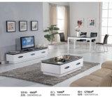 Mobília da sala de visitas do estilo de Europa ajustada (A610)