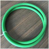 Courroie rugueuse d'unité centrale de joint circulaire vert de Dia10mm