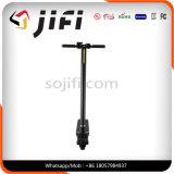 scooter électrique portatif et pliable de 24V de coup-de-pied avec l'éclairage LED