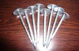 De Spijker van het Dakwerk van de paraplu van Fabriek Maorong