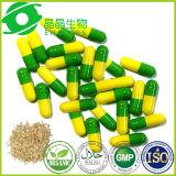 Capsula naturale della polvere dell'estratto della radice del grossista 100% Tongkat Ali