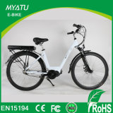 Bafang 모터로 건축되는 토크 센서를 가진 숙녀를 위한 불안정한 드라이브 모터 도시 E 자전거